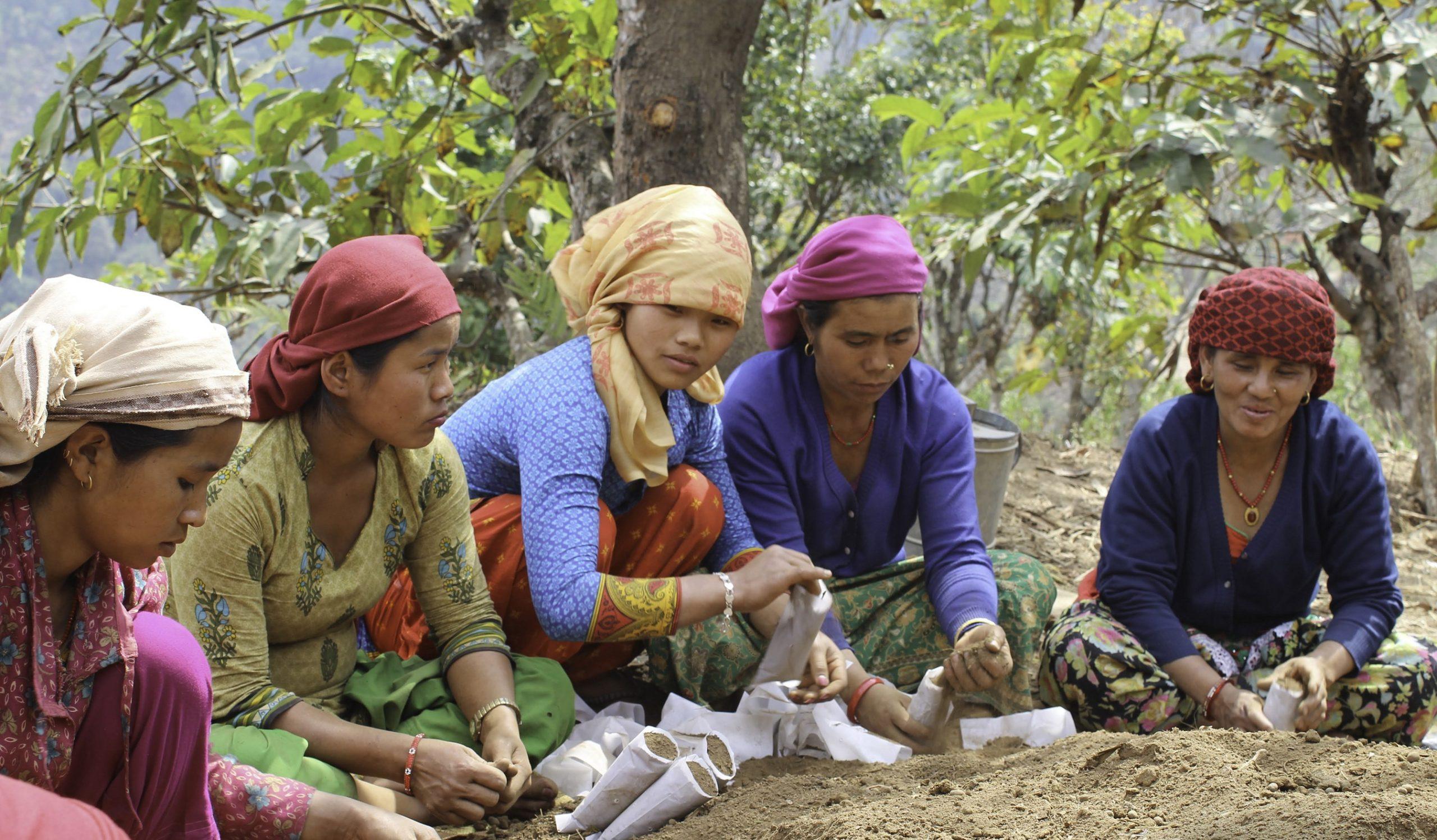 women planting together
